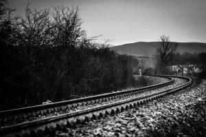 Andrea Notari - Con Trasporto